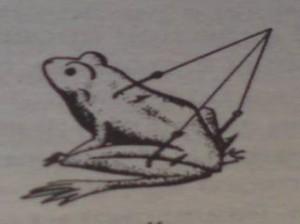 Лягушка приманка на щуку
