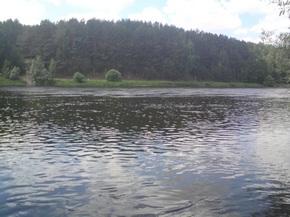 Озеро Сомино Ровенская область