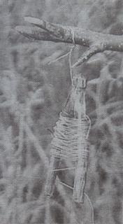 Жерлица рогатка на щуку