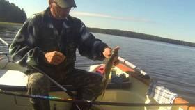 Лещ на фидер с лодки